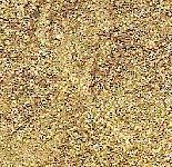 זהב R.B.G 490